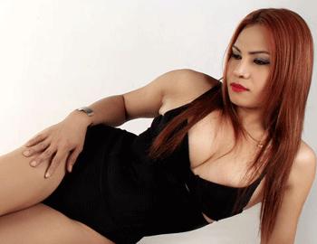 Transsexual Cam Model